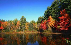 Berkshires fall foliage