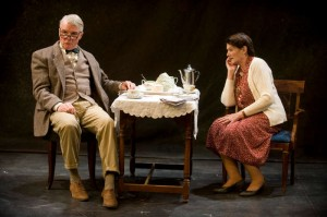 Malcolm and Elizabeth Ingram in Pinter's Mirror at Shakespeare and Co.