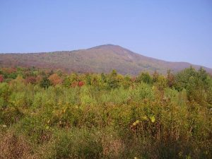Mt. Greylock in the Berkshires, Autumn view from the east.