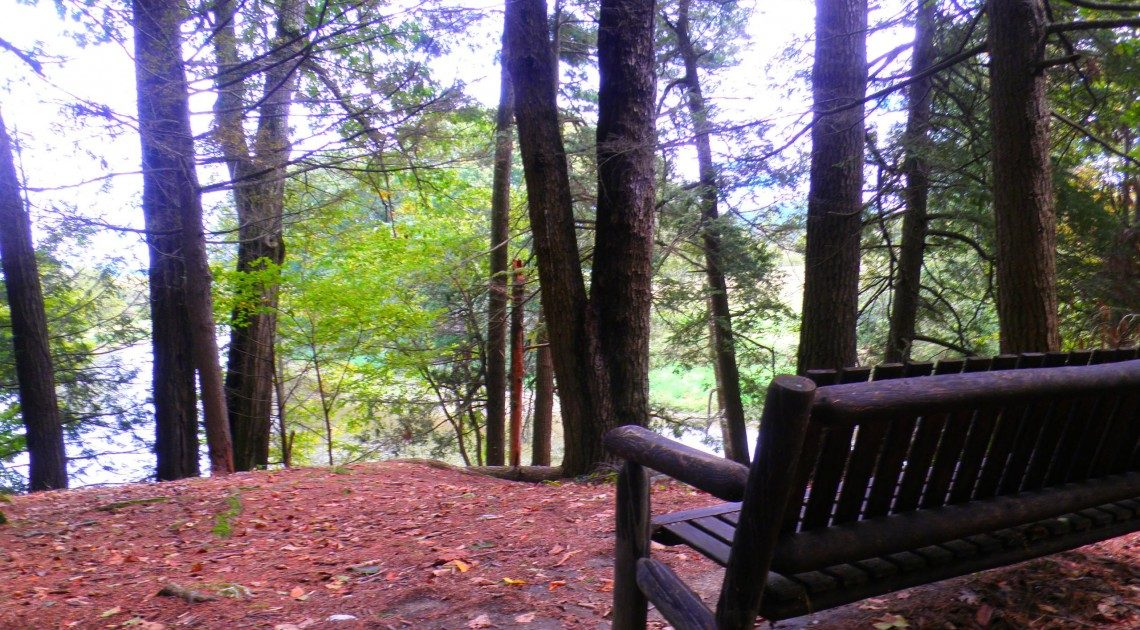 Park bench - Hiking Bartholomew's Cobble in the Berkshires, Sept. 2013.