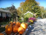 2014 Fall Foliage events in the Berkshires