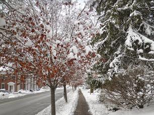 Lenox, MA Thanksgiving 2014 snowstorm